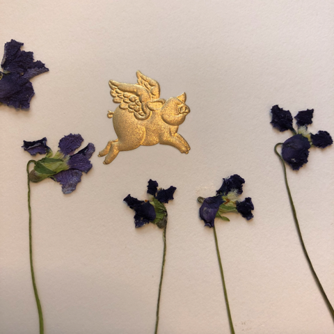 close-up of a greeting card, with a golden flying pig flying over dried violets