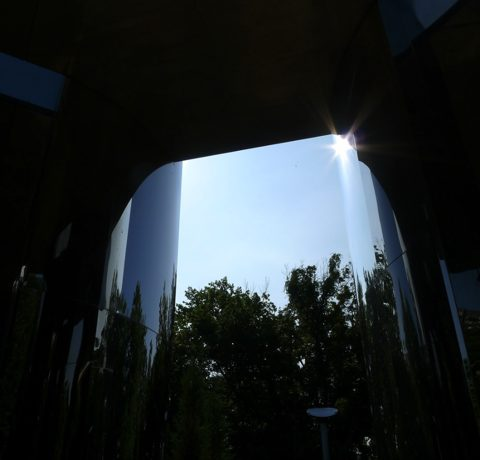 Photo from inside the Castle of Air, showing a patch of sky with a bright sun and tops of trees, surrounded by blackness