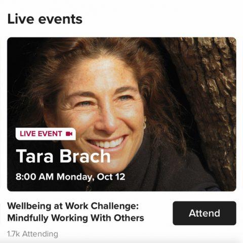 Tara Brach, from Insight Timer